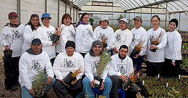 The Cornflower Farms team